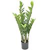 70cm Palmuvehka tunnetaan myös nimillä tikapuuku