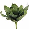 45cm Agave vihreä, pehmoista (EVA) muovisekoitett