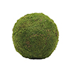 EUROPALMS 30cm Sammalpallo, vihre�. Mossball, green. Natural design object