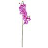 100cm Orkidea, v�ri purppura., discoland.fi