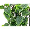 60cm Herttaköynnös vihreä, 70 lehteä, kuusi ha