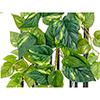 90cm Kultaköynnös, vaaleanvihreä - tummanvihre�
