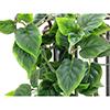 90cm Herttaköynnös, vaaleanvihreä-tummanvihreä